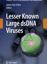 Lesser Known Large dsDNA Viruses