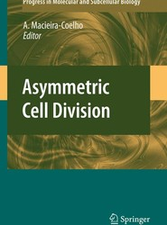 Asymmetric Cell Division