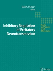 Inhibitory Regulation of Excitatory Neurotransmission