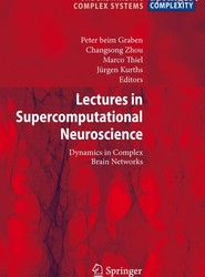 Lectures in Supercomputational Neuroscience