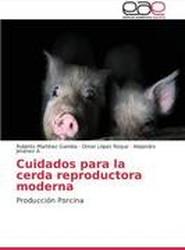 Cuidados Para La Cerda Reproductora Moderna
