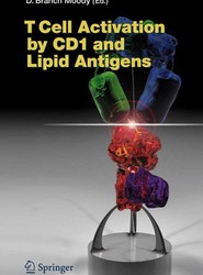T Cell Activation by CD1 and Lipid Antigens