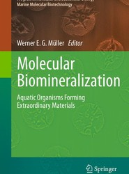 Molecular Biomineralization