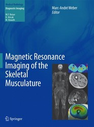 Magnetic Resonance Imaging of the Skeletal Musculature