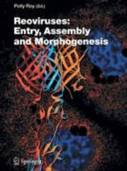 Reoviruses: Entry, Assembly and Morphogenesis