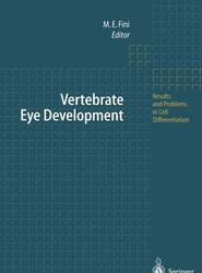 Vertebrate Eye Development