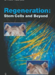Regeneration: Stem Cells and Beyond