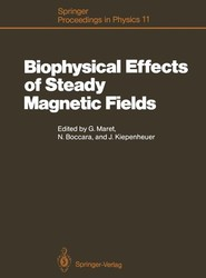 Biophysical Effects of Steady Magnetic Fields