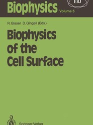Biophysics of the Cell Surface