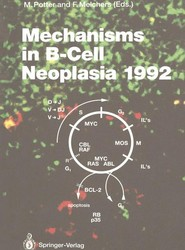 Mechanisms in B-Cell Neoplasia 1992