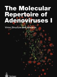 The Molecular Repertoire of Adenoviruses I