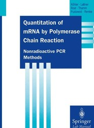 Quantitation of mRNA by Polymerase Chain Reaction