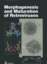 Morphogenesis and Maturation of Retroviruses