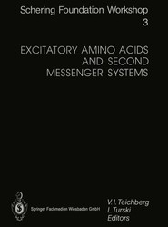 Excitatory Amino Acids and Second Messenger Systems
