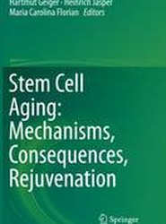 Stem Cell Aging: Mechanisms, Consequences, Rejuvenation
