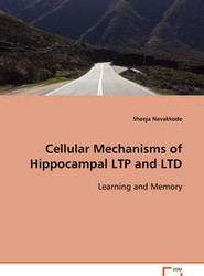 Cellular Mechanisms of Hippocampal LTP and LTD Learning and Memory