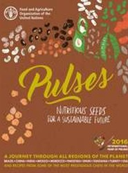 Pulses (Chinese)