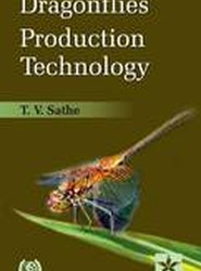 Dragonflies Production Technology