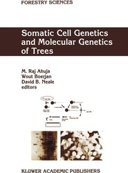 Somatic Cell Genetics and Molecular Genetics of Trees