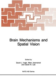 Brain Mechanisms and Spatial Vision
