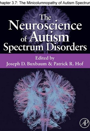 Chapter 25, The Minicolumnopathy of Autism Spectrum Disorders