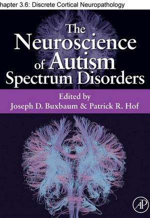 Chapter 24, Discrete Cortical Neuropathology in Autism Spectrum Disorders