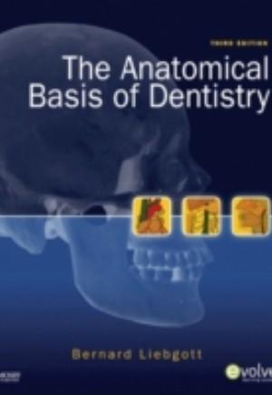 Anatomical Basis of Dentistry - E-Book