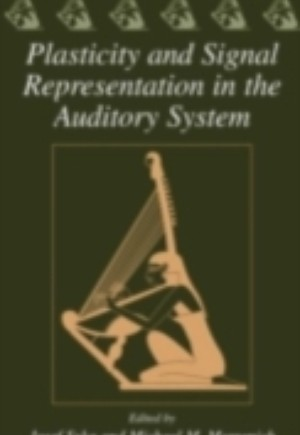Plasticity and Signal Representation in the Auditory System