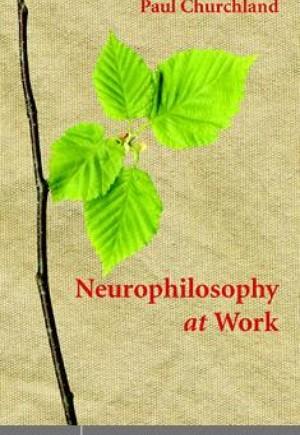 Neurophilosophy at Work