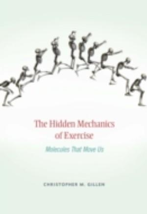 Hidden Mechanics of Exercise