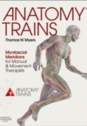 Anatomy Trains E-Book