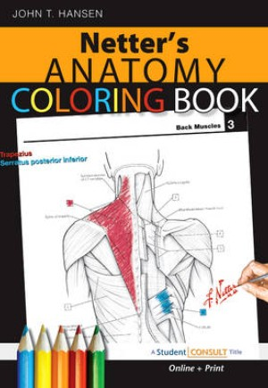 9781416047025 Netter S Anatomy Coloring Book