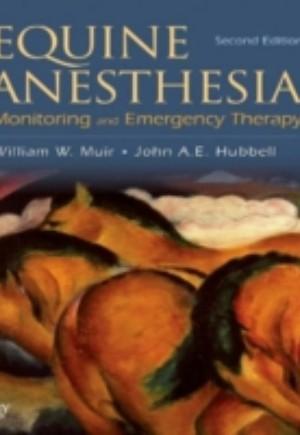 Equine Anesthesia