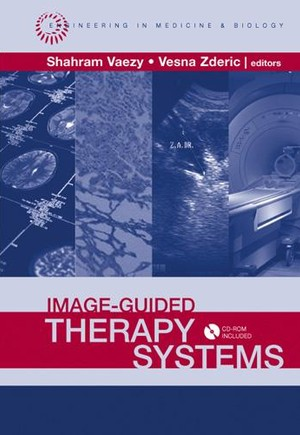 Image-Guided Therapy Systems