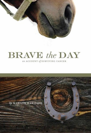 Brave The Day