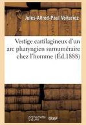 Vestige Cartilagineux d'Un ARC Pharyngien Surnum�raire Chez l'Homme
