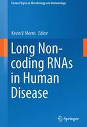 Long Non-coding RNAs in Human Disease