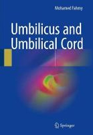 Umbilicus and Umbilical Cord