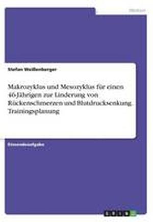 Makrozyklus Und Mesozyklus Fur Einen 46-Jahrigen Zur Linderung Von Ruckenschmerzen Und Blutdrucksenkung. Trainingsplanung
