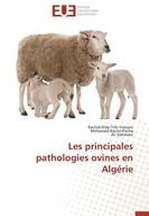 Les Principales Pathologies Ovines En Alg rie