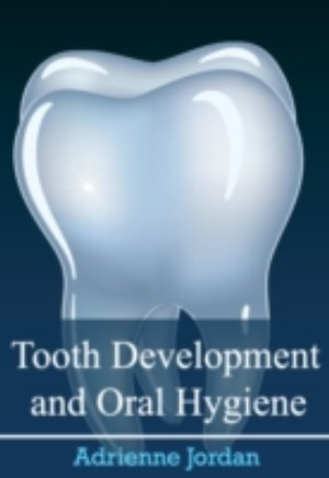 Tooth Development and Oral Hygiene