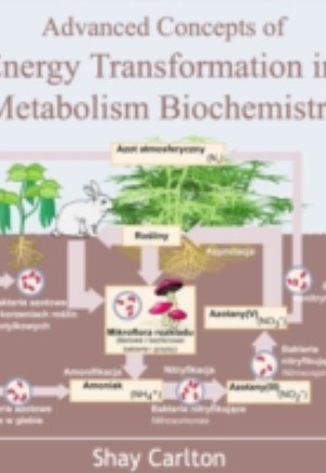 Advanced Concepts of Energy Transformation in Metabolism Biochemistry