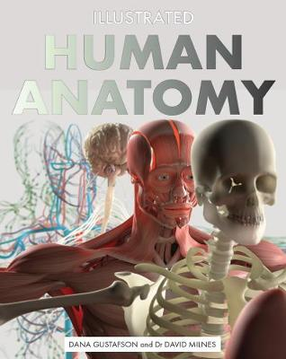Illustrated Human Anatomy