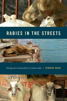 Rabies in the Streets
