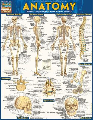 Anatomy - Reference Guide (8.5 x 11)
