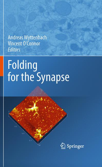 Folding for the Synapse