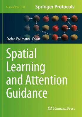 Spatial Learning and Attention Guidance