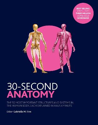 30-Second Anatomy