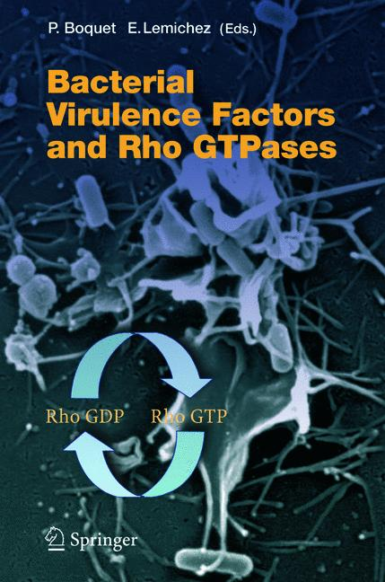 Bacterial Virulence Factors and Rho GTPases