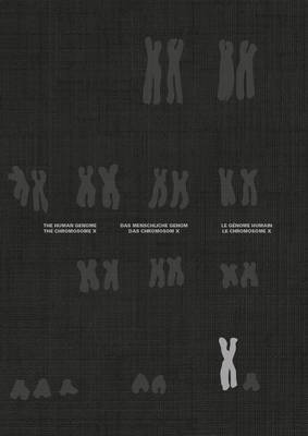 The Chromosome X and the Human Genome